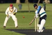 cricket-7